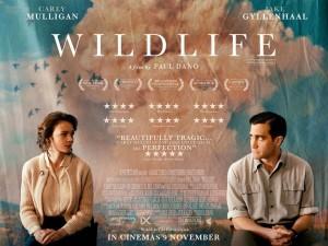 17-wildlife